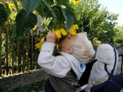 Sport und Spiel im Garten - Sicherheit geht vor!