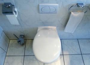 Toilette - starke Verschmutzungen aus Kalk und Urinstein entfernen