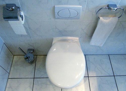 urinstein toilette entfernen