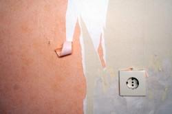 Tapeten entfernen leicht gemacht - Ratgeber & Tipps - Entfernen von Tapeten ohne Rückstände