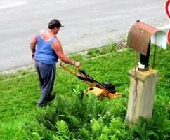 Elektrorasenmäher Aufsitzmäher Benzinmäher - Der beste Rasenmäher für Deinen Garten