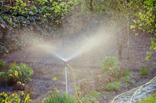 Möglichkeiten der Gartenbewässerung: Vom einfachen Tropfschlauch bis zu High-Tech-Lösungen