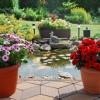 Gartenbeleuchtung und Licht im Garten - Solarleuchten, Außenleuchten, LED Leuchten - Ratgeber & Tipps