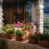 Pflanzengefäße für den Balkon